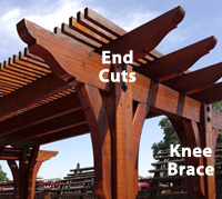 end-cuts-knee-braces